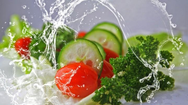 Multifunctionele saladebakken van biologische materialen