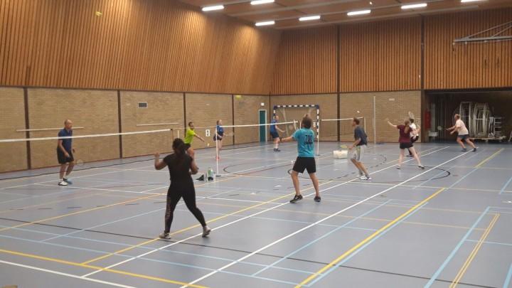 Leer badmintonnen in 10 lessen!
